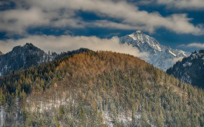 pwh_2312_hdr